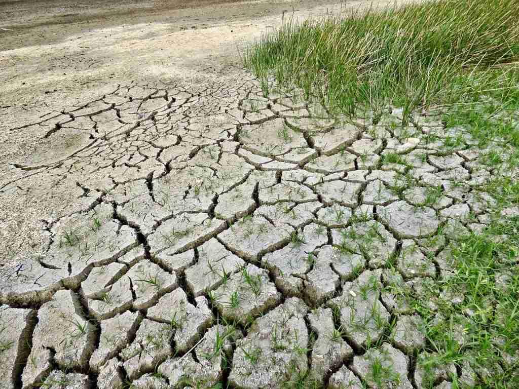 Terreno arido a causa della siccità