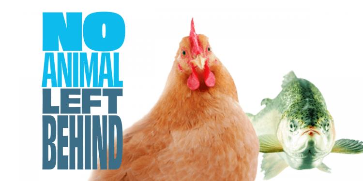 Immagine della campagna No Animal Left Behind