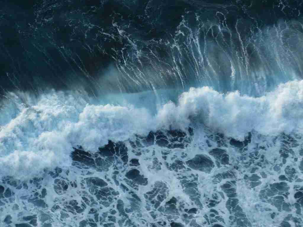 Onde oceano per l'articolo Seaspiracy: il miraggio della pesca sostenibile