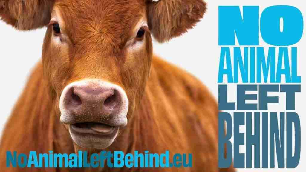 No Animals Left Behind - campagna